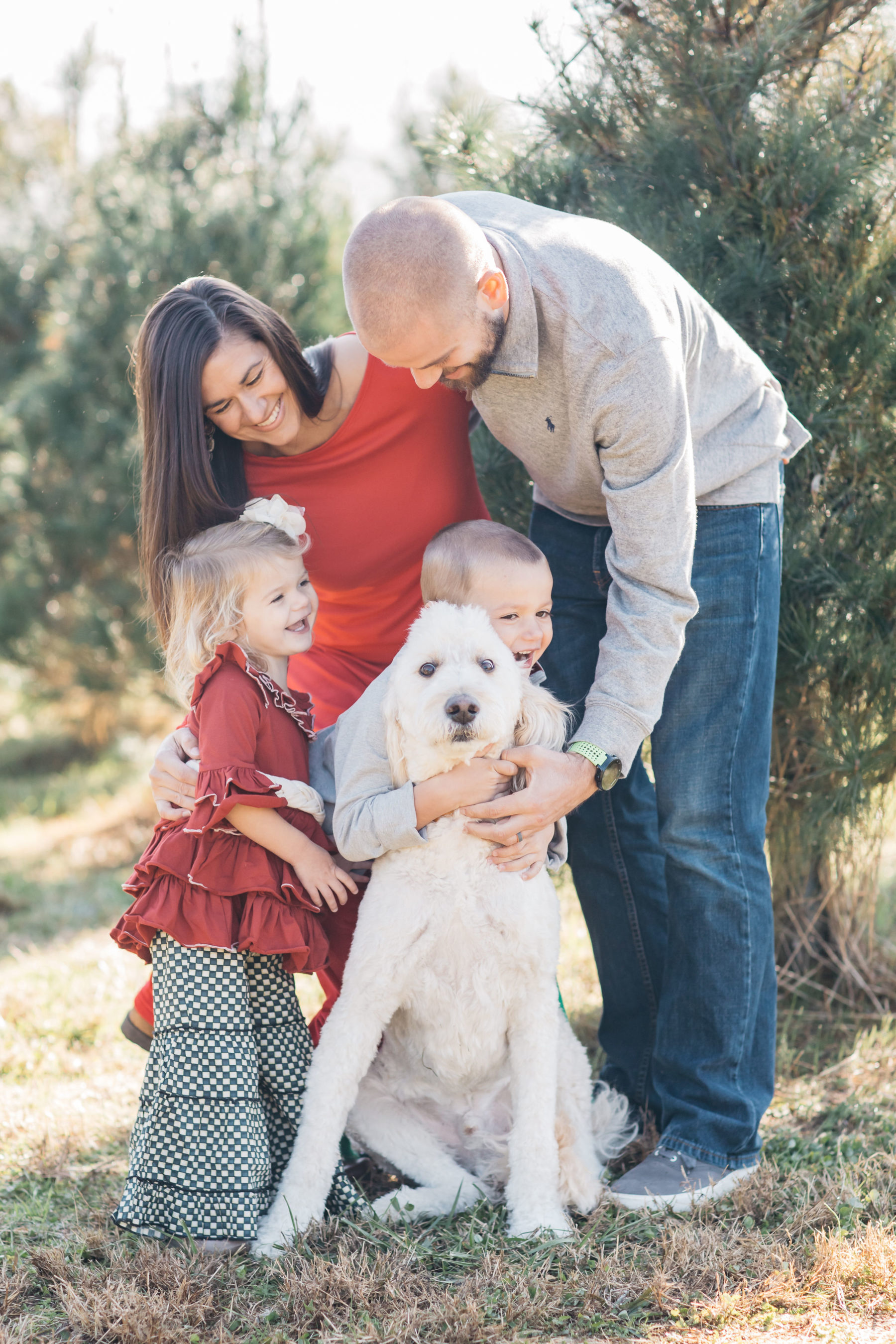 Country Cove Tree Farm Mini Family Session featured on Nashville Bride Guide